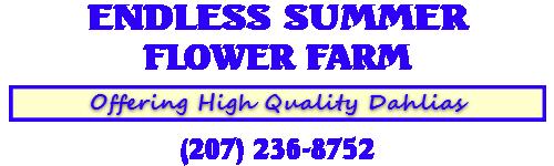 Endless Summer Flower Farm